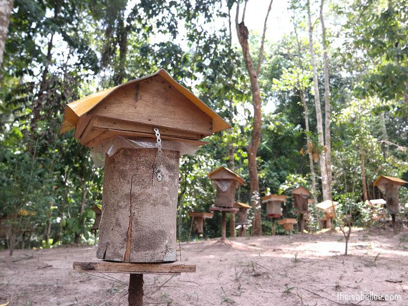 Melipoly Bee Farm Bentong